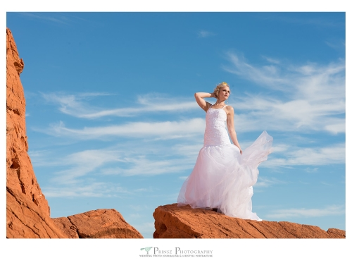 Wedding Photo Session in Valley of Fire Nevada